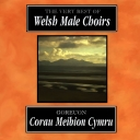 FESTIVAL OF MASSED CHOIRS 1991 - GOREUON CORAU MEIBION CYMRU / THE VERY BEST OF WELSH MALE CHOIRS